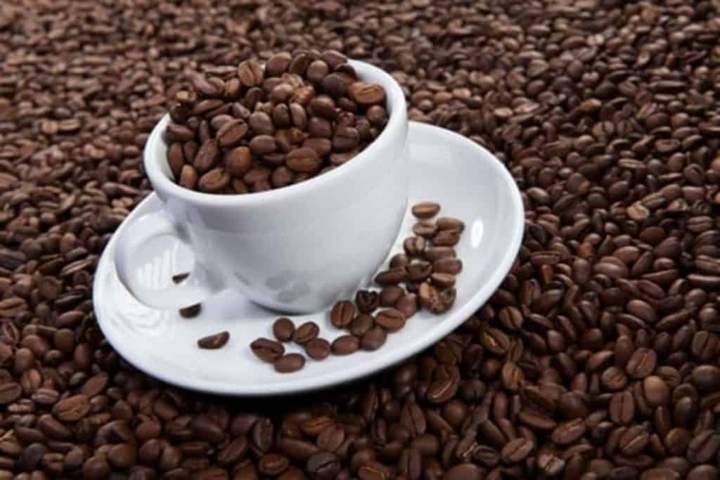 A cup of cocoa beans