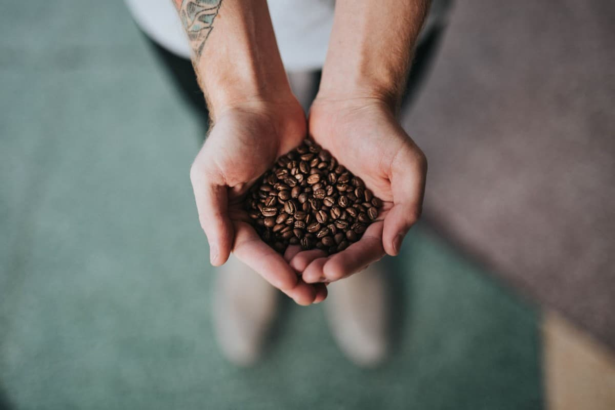 Hands and coffee beans