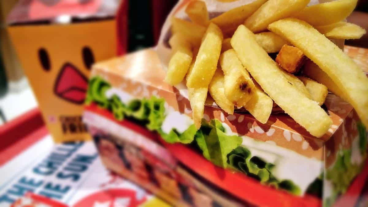 Fries and Burger Box